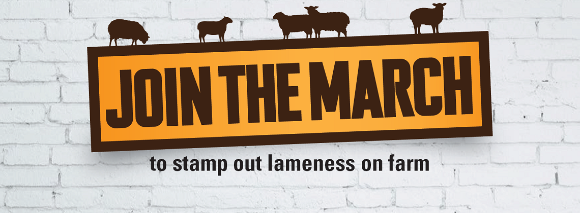 Image of MSD Animal Health join the march sheep lameness banner