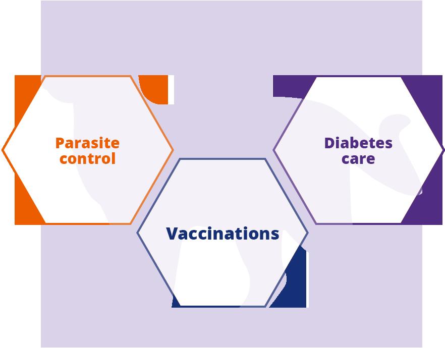 Keeping Britain's Pets Healthy cat parasite vaccine diabetes  information