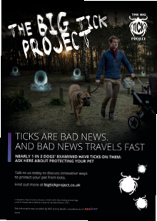 Big Tick project downloadable information