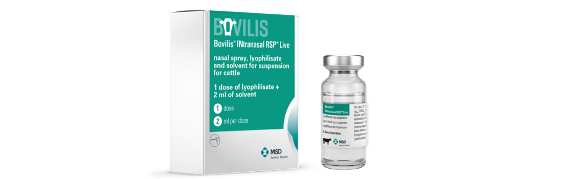 Image of Bovilis® Intranasal RSP™ Live carton and vial
