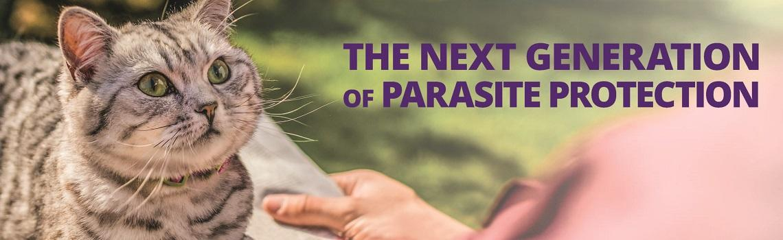 """Image of Cat with """"the next generation of parasite protection"""" text"""