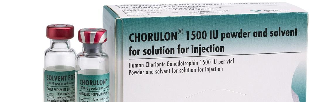 Image of Chorulon and solvent bottles next to the cardboard carton