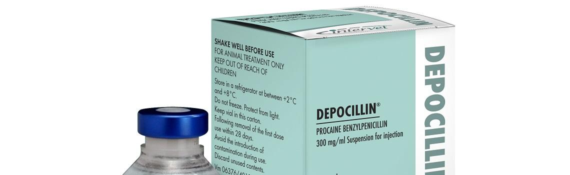 Image of Depocillin bottle next to it's cardboard carton, zoomed to show product name