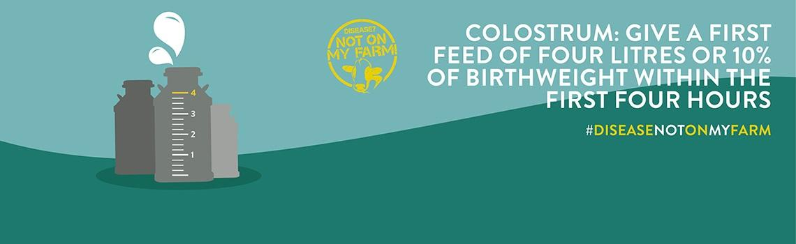 Rolling banner images detailing key messages on colostrum feeding