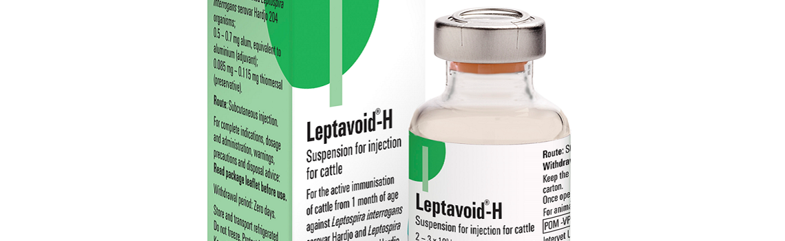 Image of Leptavoid H bottle and plastic vial next to their cardboard cartons