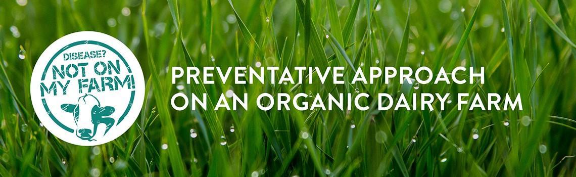 Preventative health on organic dairy farm