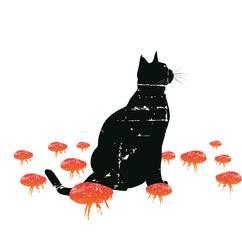 Big Flea Project cat imagery