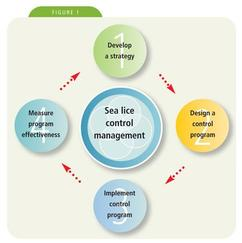 Sea Lice Control Cycle
