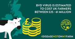 Estimated UK costs of BVD are between £25 – 61 million