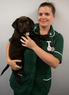 Katie Whalley, Awarded 2019 Vet Nurse Research Bursary