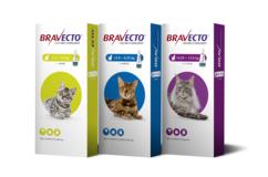 Bravecto Cat Spot On product range