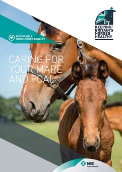 This booklet provides detailed advice on foal care to give you an idea of what to expect if you do decide to breed form your mare.