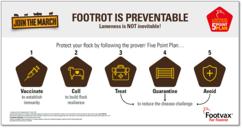 Image of MSD Animal Health Footvax Graphic