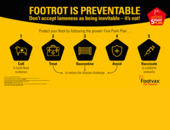 Footrot is preventable infographic