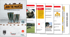 Image of Lameness Control Planner and Footvax Leaflet pages