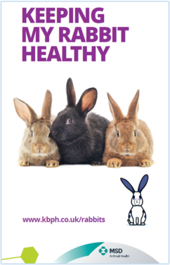 'Keeping My Rabbit Healthy' Client Leaflet