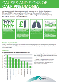 Information sheet detailing the causes and signs of pneumonia