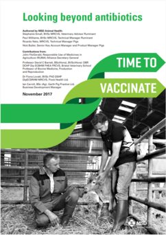 Image of front page of Time to Vaccinate looking beyond antibiotics paper