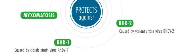 Infographic of protection from Nobivac MyxoRHD PLUS