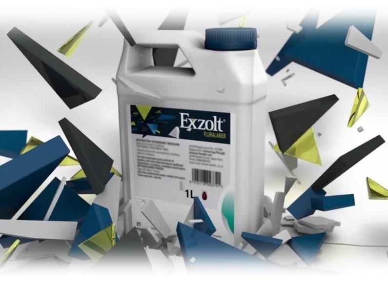 Exolt brand imagery