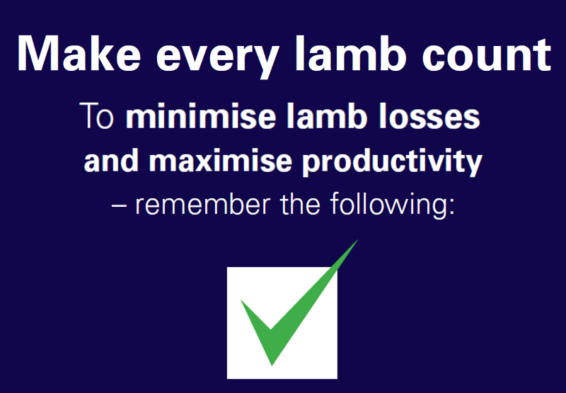 Image of text from Project Lamb Give and Let Live Checklist