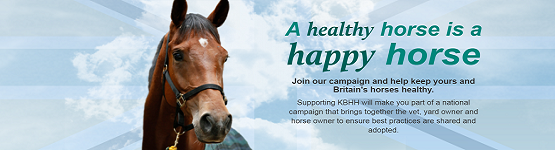 Keeping Britain's Horses Healthy imagery