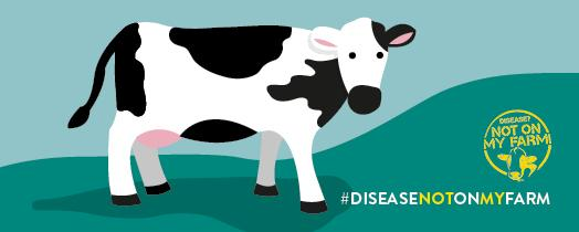 Disease? Not On My Farm! infographic