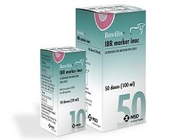 Image of Bovilis IBR Marker inac cardboard cartons