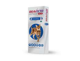 Image of Bravecto Plus Spot on for 2.8 to 6.25 kg cats box