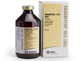 Image of Engemycin DD bottle next to it's cardboard carton