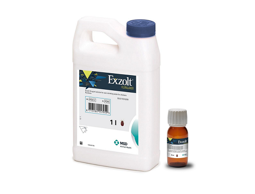 Image of Exzolt 1 litre and 50ml product pack shots
