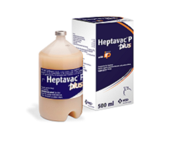 Image of Heptavac P PLUS container next to it's cardboard carton