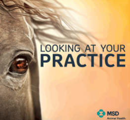 Looking at your practice through a different lense