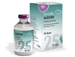 Packshot of Porcilis Glasser bottle next to cardboard carton