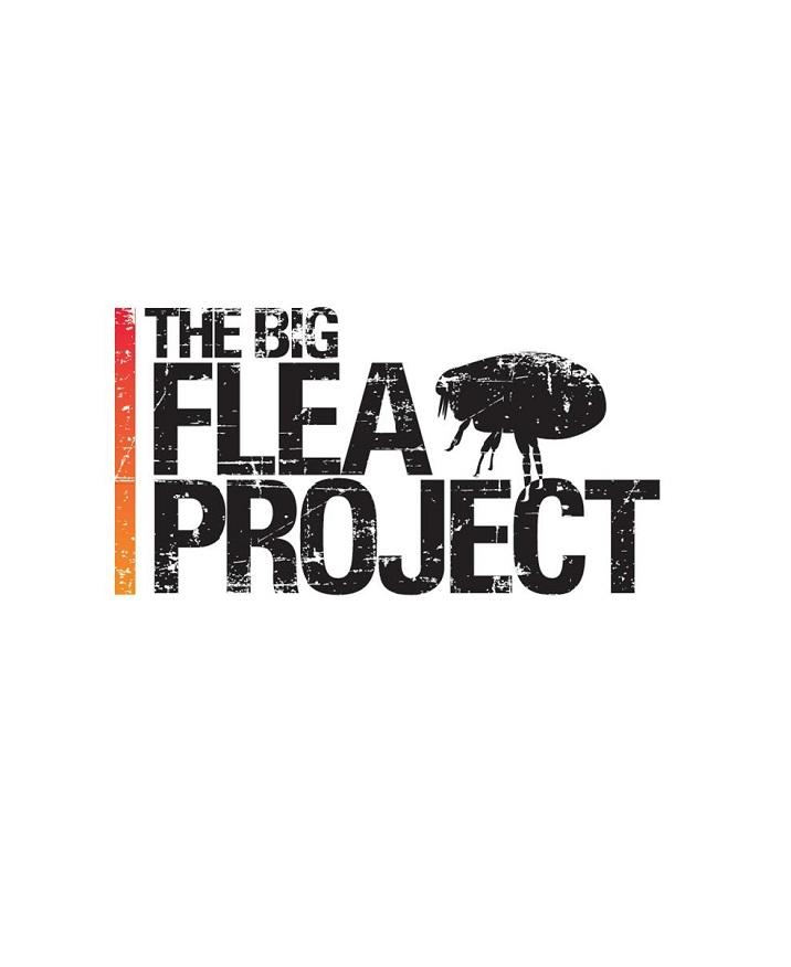 Big Flea Project
