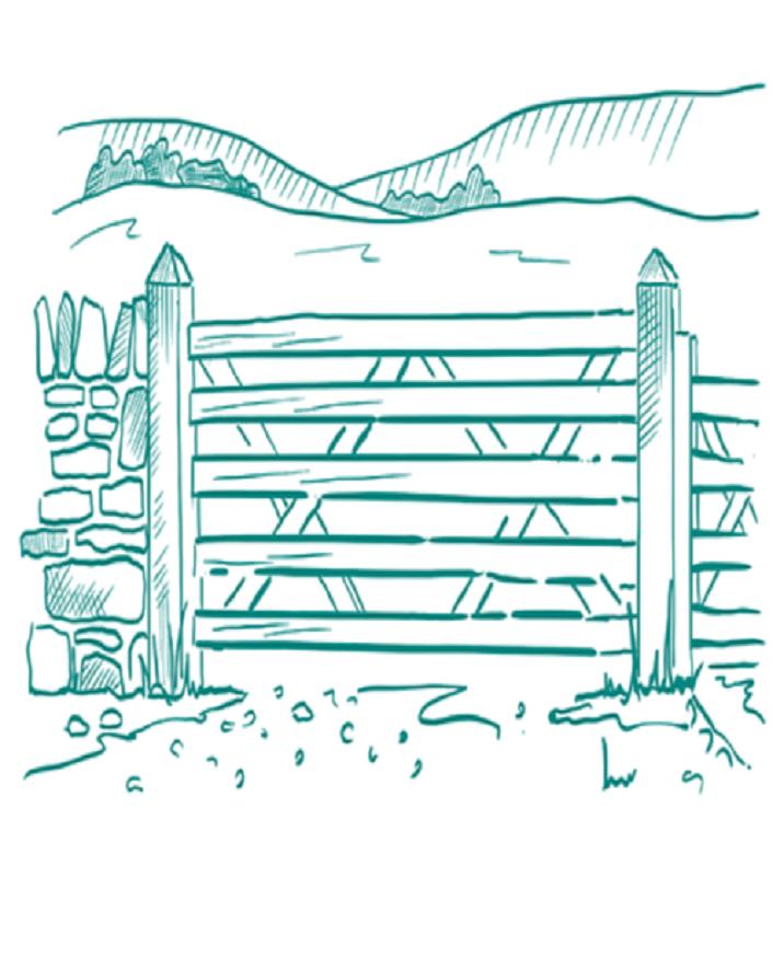 ruminants purpose
