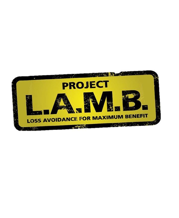 Project LAMB
