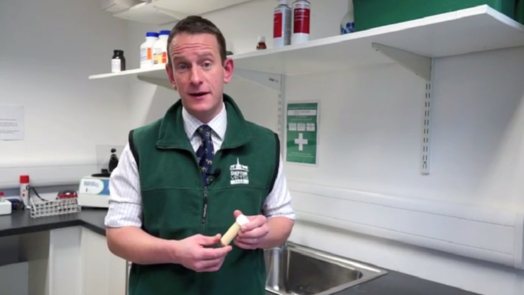 Image of a vet holding a test tube of colostrum