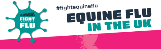 Image of Equine Flu in the UK campaign banner