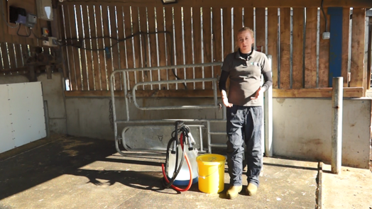 Image of vet standing next to equipment used to harvest colostrum
