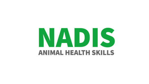 NADIS logo