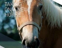 Front cover of downloadable booklet 'Taking on a new horse'.