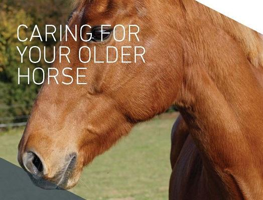 Front cover of 'Caring For Your Older Horse' booklet