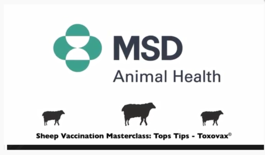 Toxovax masterclass video image