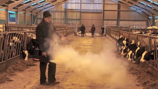 Image of livestock building consultant measuring air speed in calf housing