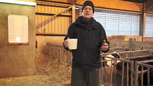 Image of livestock housing consultant with jug of water in calf housing