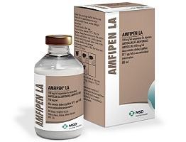 Image of Amfipen LA bottle next to it's cardboard carton