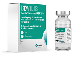 Image of Bovilis INtranasal RSP Live vial next to carton