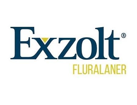 Exzolt logo