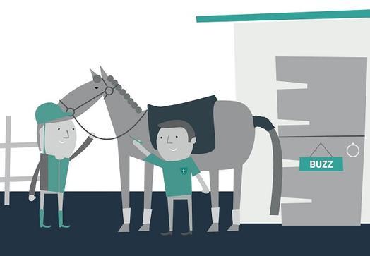 Horse Health Week 2019